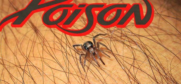 รู้ไว้ใช่ว่าแมลงตัวร้ายใกล้ตัวคุณที่อาจจะทำร้ายคุณได้ตลอดเวลา