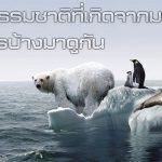 ภัยธรรมชาติ